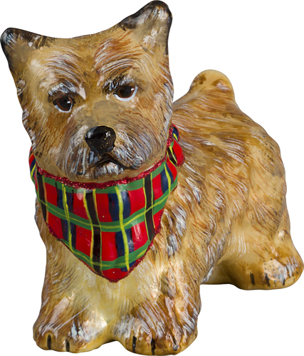 Cairn Terrier Cream with