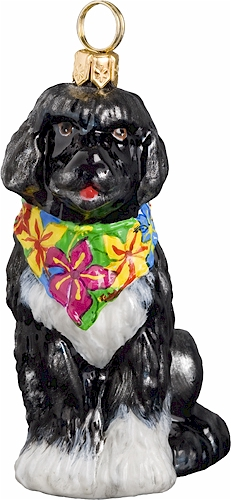 Portuguese Water Dog with Hawaiian Bandana